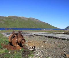 4. kennisetning – Skildu eftir það sem þú finnur